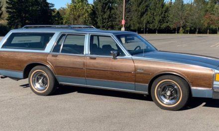 Blue Canoe:  1985 Buick LeSabre Estate Station Wagon – $2,500