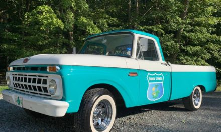 Sunny Greens: 1965 Ford F100 Restored – NOW $13,500