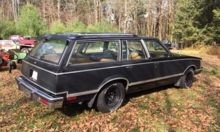 Faux Carbon Fiber:  1979 Pontiac Grand LeMans Station Wagon – Sold!
