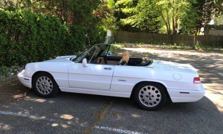 Almost 50: 1991 Alfa Romeo Spider Veloce Series 4 – SOLD!