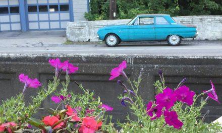 Wallflower: 1963 Ford Falcon Two Door Sedan – Sold?