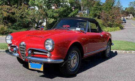 Classic Italian: 1965 Alfa Romeo Giulia Spider Normale – SOLD!