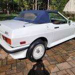 Tasmin In Drag: 1986 TVR 280i – $3,995