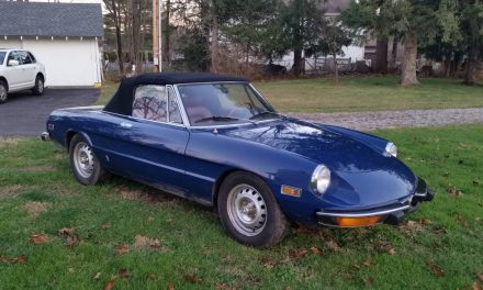 Classifind Cut: 1973 Alfa Romeo Spider Veloce – $24,000