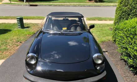 Classifind Cut: 1980 Alfa Romeo Spider Veloce – $9,500