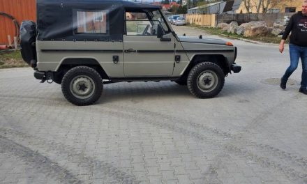 Wolf in Civilian Clothing: 1993 Mercedes-Benz 250GD – Sold?