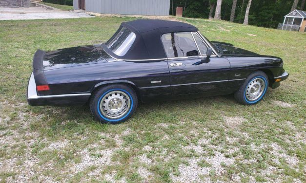 Blue Wall Beauty: 1986 Alfa Romeo Spider Graduate – SOLD!